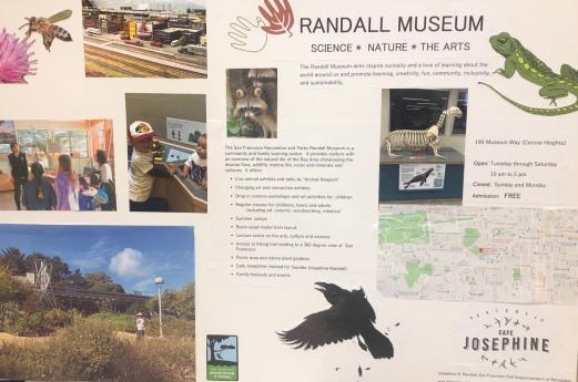 RandallMuseum